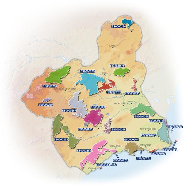 Mapa Region De Murcia.Conjunto De Areas Zepa De La Region De Murcia
